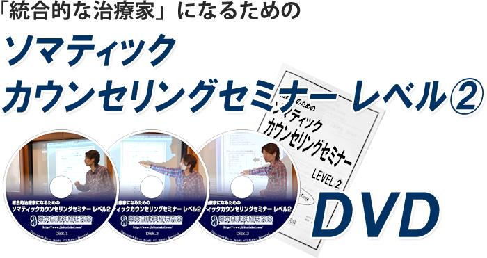 「統合的な治療家」になるためのソマティック・カウンセリングセミナーレベル2 DVD 発売決定!